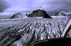 View a larger version of this image (jpg).  (Unvegetated (rock and ice))